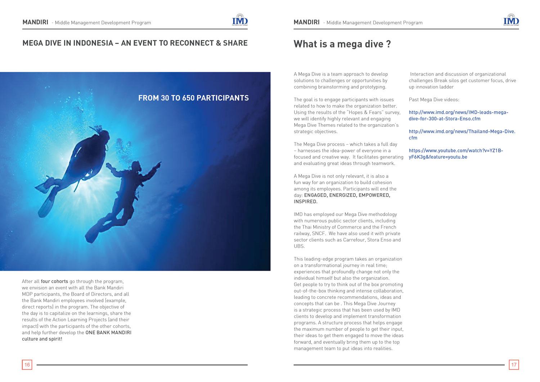 IMD_program_brochure_5